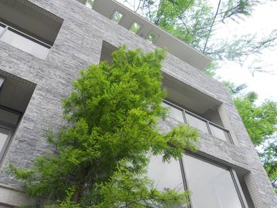 桃園新建案-佳河 富園 總價:1,500~2,300萬