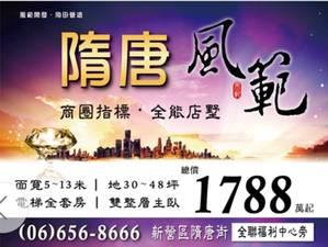 台南新建案-隋唐風範~店墅合一全能宅 總價:1,788萬起